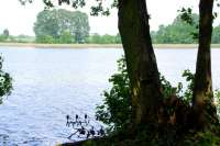 Angeln am Loppiner See